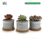 T4U-2-25-pouce-ciment-Succulent-planteur-Pot-avec-plateau-en-bambou-gris-ensemble-de-3