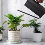 Bouteille-d-eau-en-acier-inoxydable-1-5-l-plantes-succulentes-bouilloire-d-arrosage-en-Pot