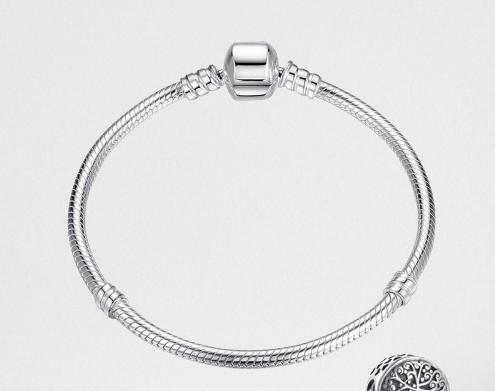 Bracelet pour charms en argent 925