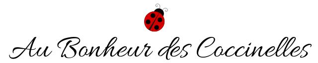 Bijoux Au Bonheur des Coccinelles