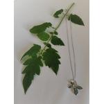 collier nature feuilles argent